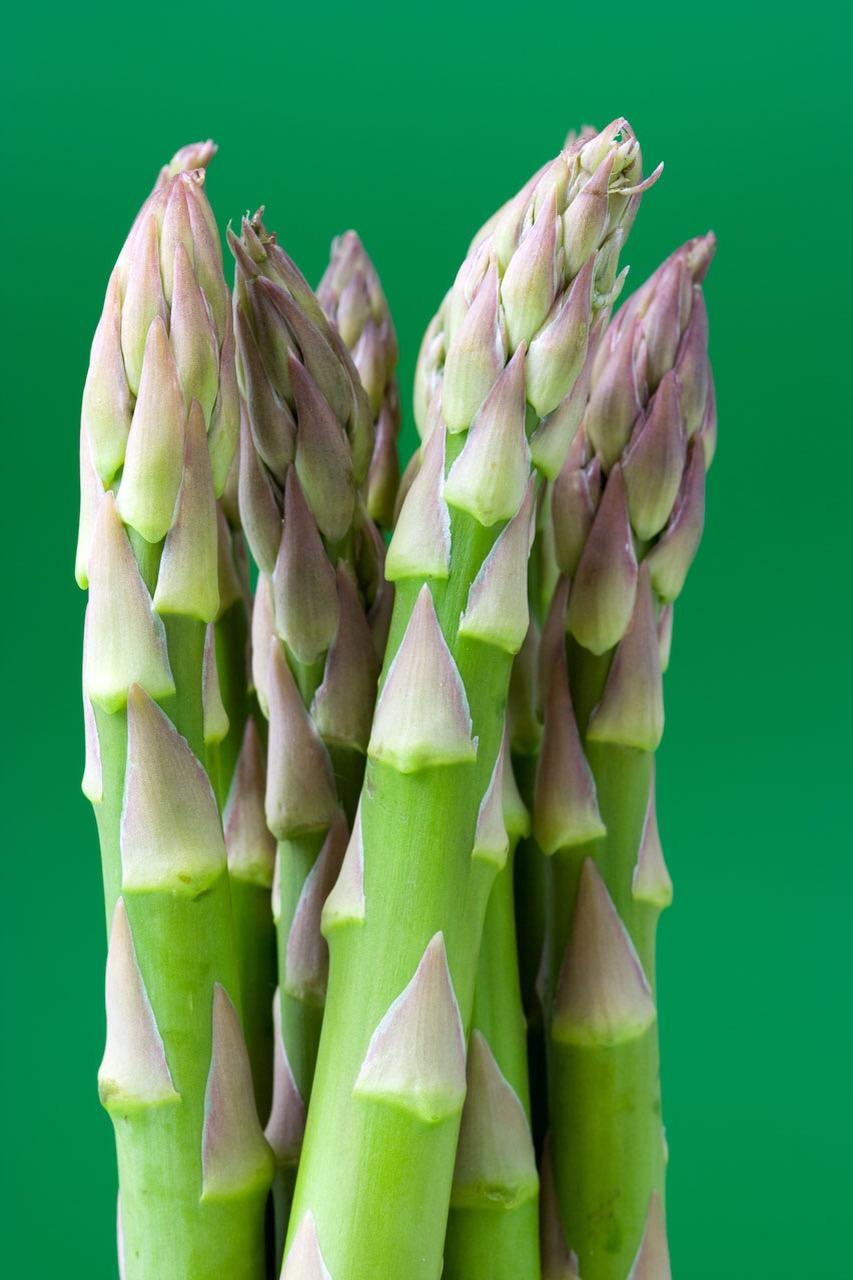 Gardening: Growing Aspargus